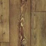 Sequoia 54